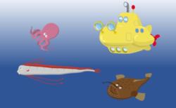 (終了しました)深海のいきもの教室