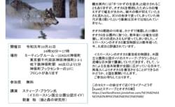 (終了しました)【10/31(木)】ミニセミナー イエローストンのオオカミ復活成功物語~そして・・・日本でのオオカミ再導入は可能か?~