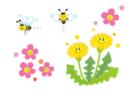 浜離宮自然観察会(春)