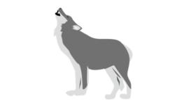 【中止】絶滅したオオカミの謎を探る展